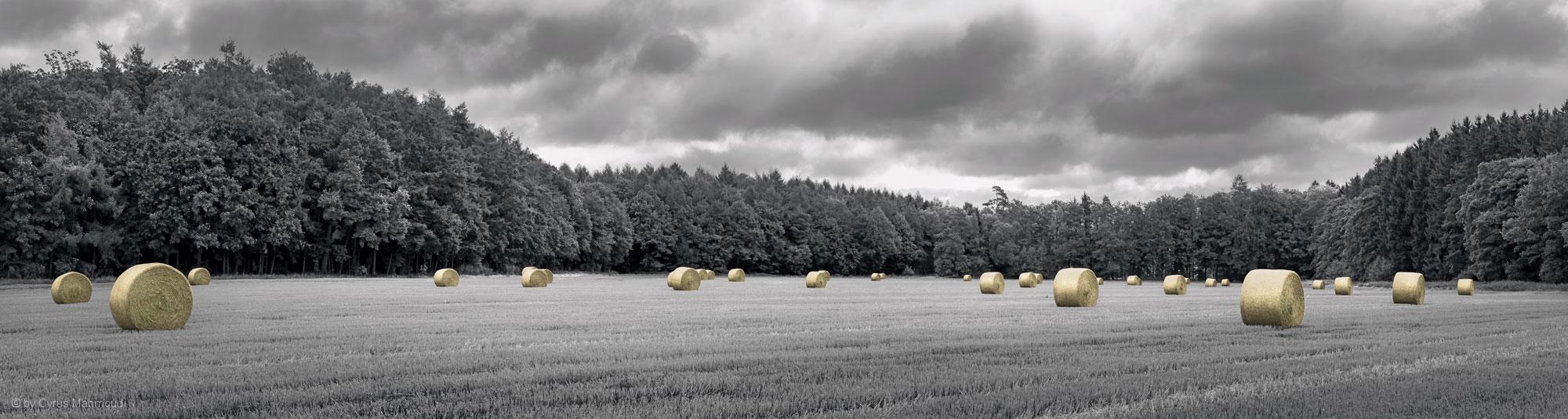 Strohballen bei Sulzemoos